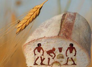 Storie Culinarie: Il pane al farro