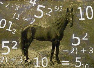 Hans il cavallo