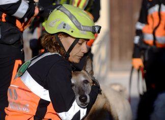 L'aiuto che regalano i cani da soccorso e i loro conduttori