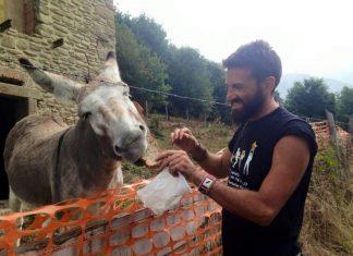 Diario di Gianluca