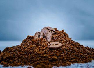 Fondi di caffè: tutti i modi di riciclarli