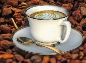 Il Caffè di cicoria