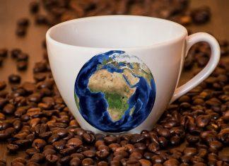 Perchè il caffè e la caffeina sono importanti per noi