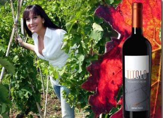 TITOLO, storia di un vino di successo