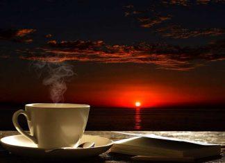 Caffè la Biografia dall'Africa