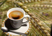 caffè d'orzo, caffe d orzo