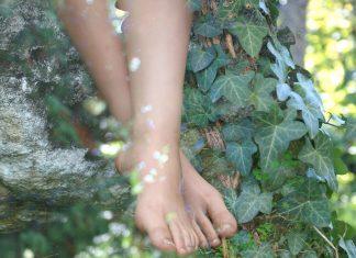 L'edera, per essere belle sotto il sole d'estate