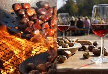 Autunno: Castagne, Vino e Törggelen