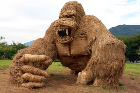 artisti giapponesi Wara art festival-Niigata gorilla