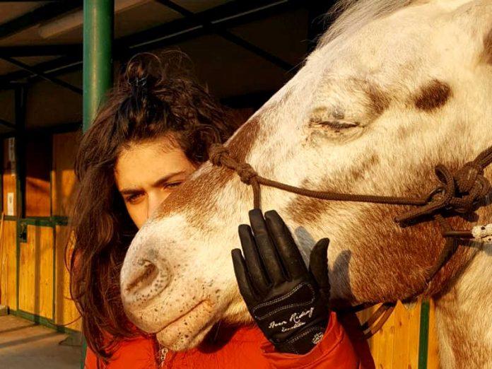 Alice guarda i cavalli