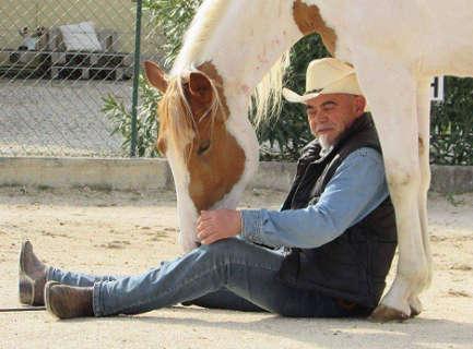 Dalle stelle alle stalle, con cavallo