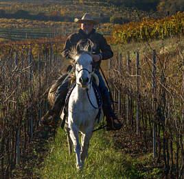 Lorenzo Costa a cavallo