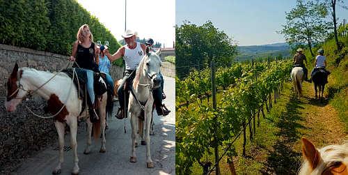 Quando un cavallo conduce dalle stelle alle stalle: turisti e cavalli