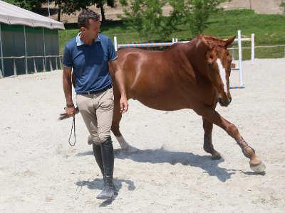 Luca Moneta approccio naturale coi cavalli