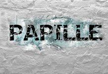 Papille