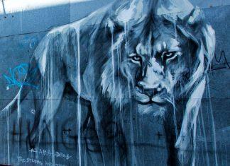 Faith47 la street art dal Sud Africa