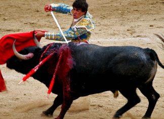 Tradizioni folcloristiche in Spagna che coinvolgono gli animali