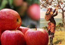 melo dai frutti prodigiosi
