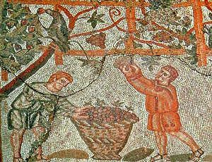 Il vino al tempo dei Romani