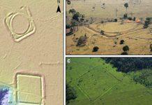 I resti di una civiltà di 1 milione di persone nella foresta Amazzonica