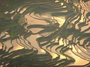 Le terrazze di riso di Yuanyang 9