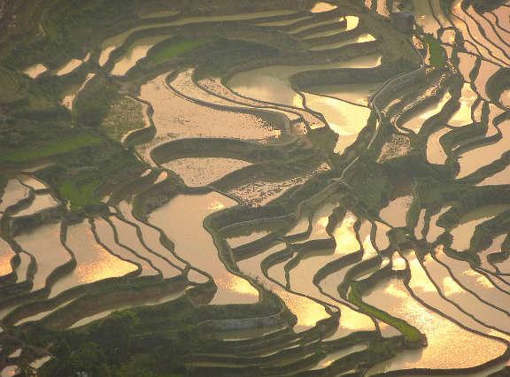 Le terrazze di riso di Yuanyang