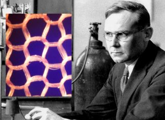 La tragica fine di Wallace Carothers, l'inventore del nylon