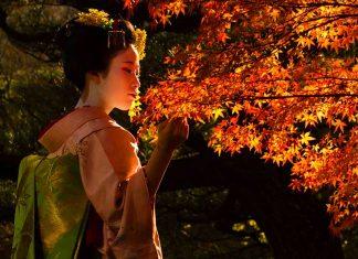 La geisha, la storia del mondo fluttuante