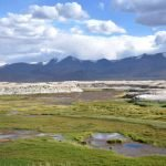 reportage Ladakh e Himachal Pradesh: lago salato TZO KAR