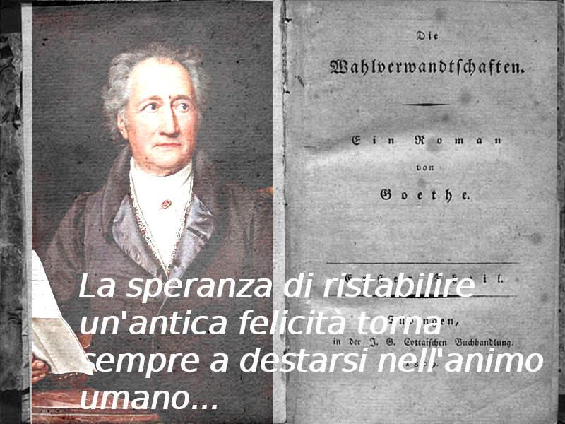 Le Piu Belle Frasi Di Goethe Le Affinita Elettive Caffebook