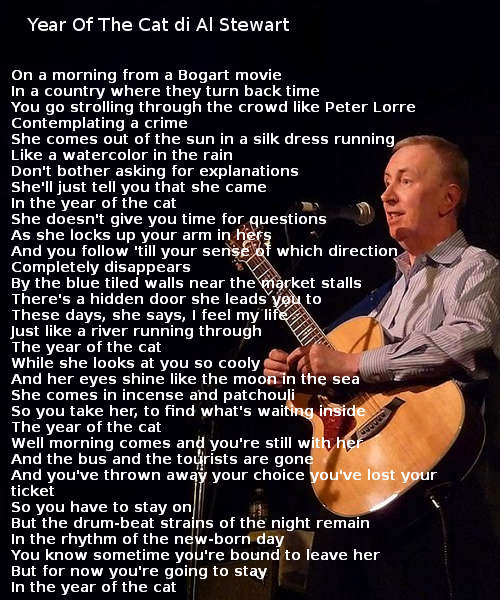 Testo di Year Of The Cat di Al Stewart