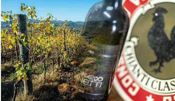 Panorama Vino Chianti Classico 2015 di Leonardo Manetti