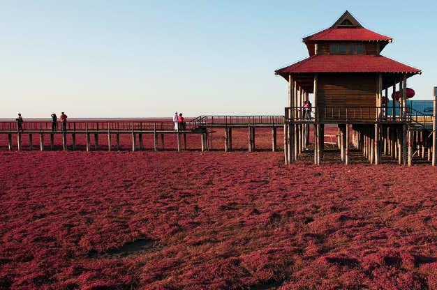 Passerella, spiaggia rossa di Panjin