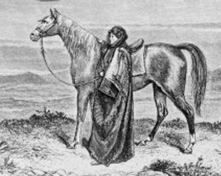 Disegno Lady Anne Blunt: la signora dei cavalli