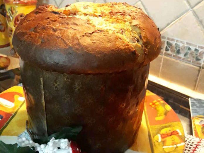 Panettone fatto in casa al cioccolato ricetta semplice