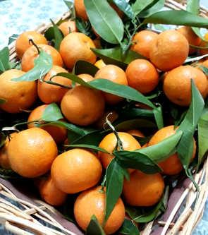Ricetta della Marmellata di mandarini con la buccia fatta in casa