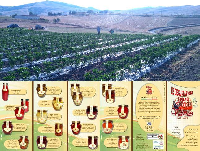 Agricola di Colangelo Maddalena. Le Degustazioni di Casa Valentino