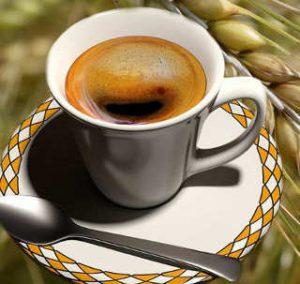Il caffè d'orzo wcaffè d'orzo