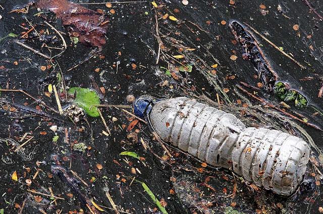 Mare e Inquinamento da plastica 2