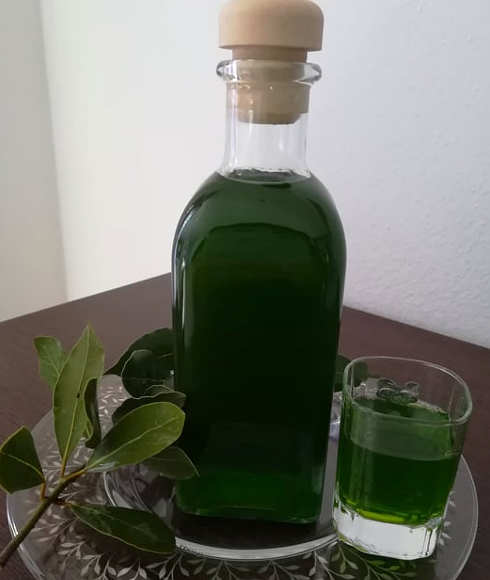Ingredienti Liquore all'alloro fresco fatto in casa
