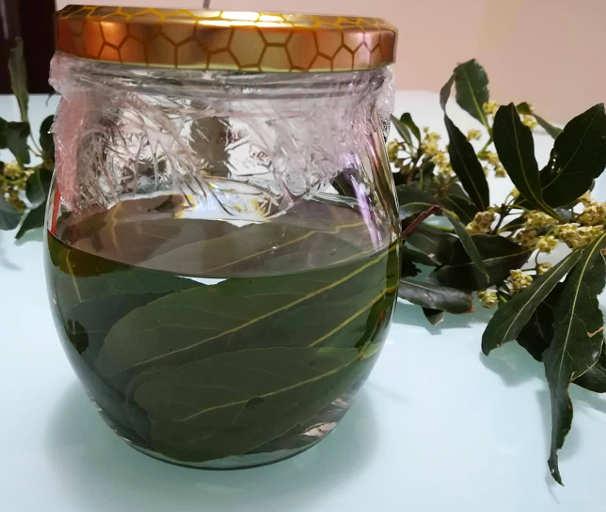 Preparazione Liquore all'alloro fresco fatto in casa