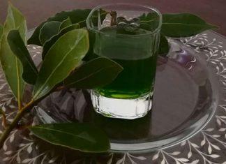 Liquore all'alloro fresco fatto in casa