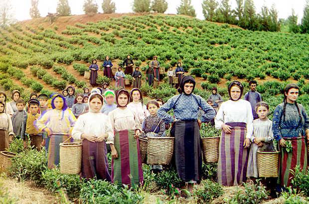 Lavoratrici nei campi Russia 1909 -1914