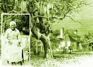 Anna Kingsley la principessa africana che fu prima schiava e poi divenne una delle più ricche proprietarie terriere in America
