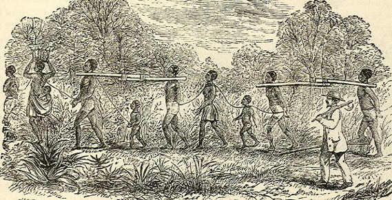 la schiavitù ai tempi di Anna Kingsley