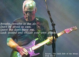 La Black Strat di Davis Gilmour vendita da record per l'ambiente