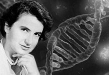 Rosalind Franklin, la doppia elica del DNA e l'effetto Matilda