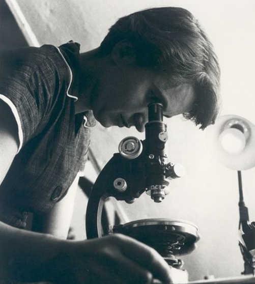 La scienziata Rosalind Franklin