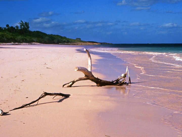 le 10 spiagge tra le migliori del mondo: Bahamas Pink Sand, Harbour Island
