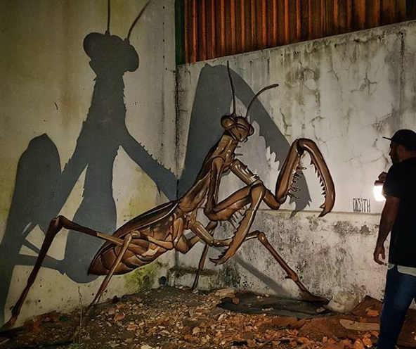 Murales con effetto 3D  dell'artista portoghese